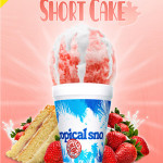 Strawberry Short Cake Berry Sweet and Berry Fun